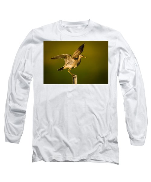 Upland Sandpiper On Steel Post Long Sleeve T-Shirt