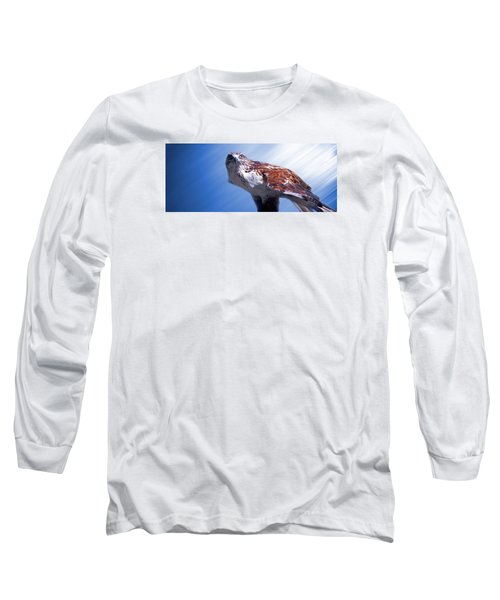 Upon His Perch Long Sleeve T-Shirt