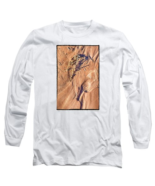 Utah Sand Long Sleeve T-Shirt by R Thomas Berner