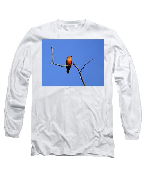 Vermillion Flycatcher Long Sleeve T-Shirt