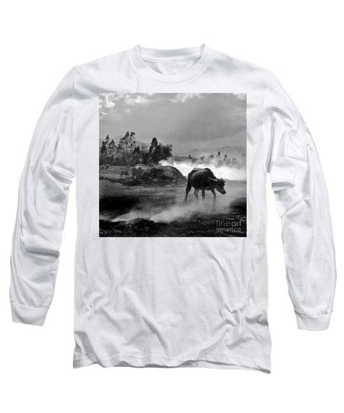 Vietnamese Water Buffalo  Long Sleeve T-Shirt