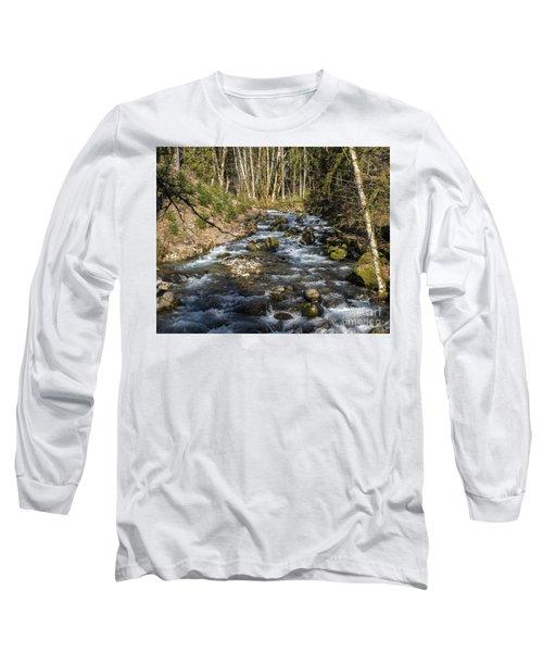 Views Of A Stream, Iv Long Sleeve T-Shirt by Chuck Flewelling