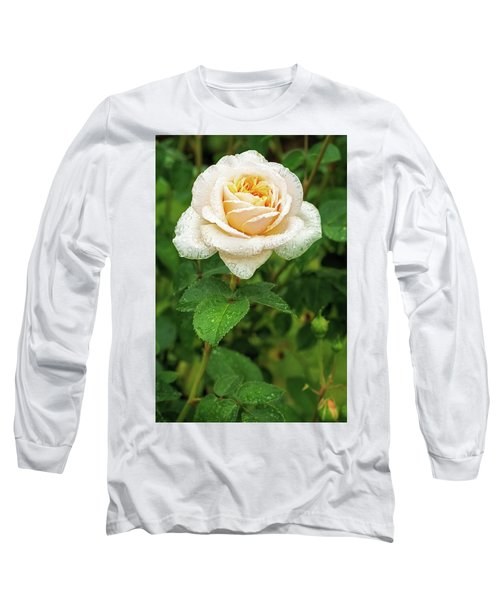 Virtue Of Pureness Long Sleeve T-Shirt by Ken Stanback