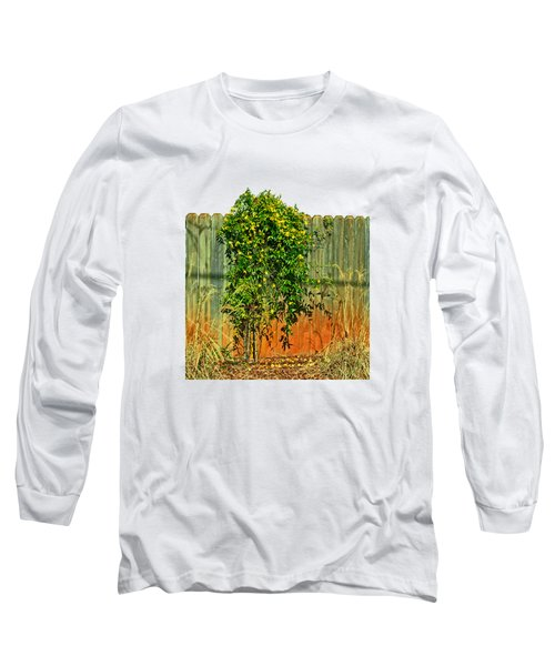 Wall Of Jasmine Long Sleeve T-Shirt by Larry Bishop