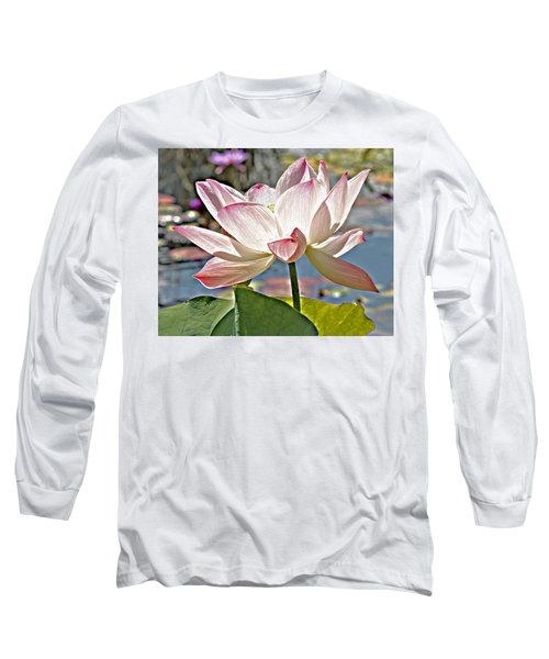 Water Lily Long Sleeve T-Shirt by Catherine Alfidi