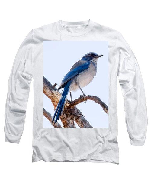 Western Scrub-jay Long Sleeve T-Shirt