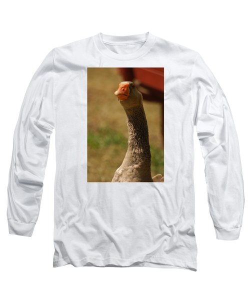Long Sleeve T-Shirt featuring the photograph Who...me by Ramona Whiteaker