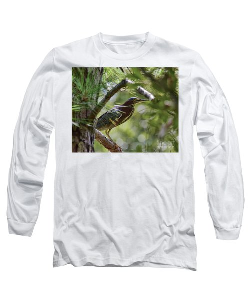 Long Sleeve T-Shirt featuring the photograph Wild Birds - Green Heron Tries To Hide by Kerri Farley