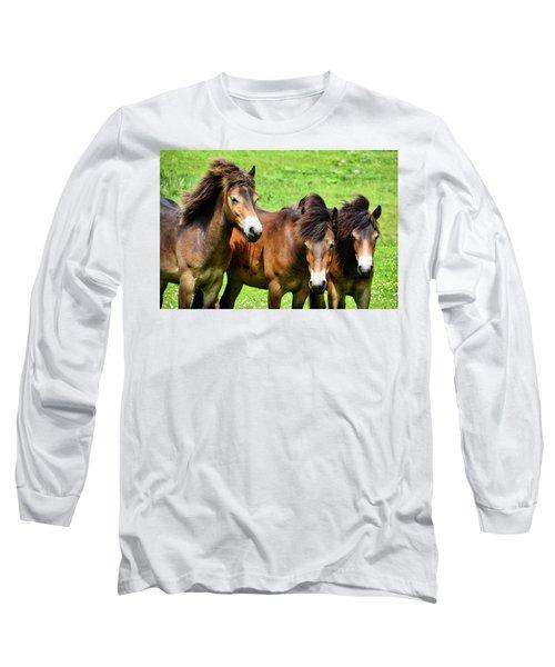 Wild Horses 2 Long Sleeve T-Shirt