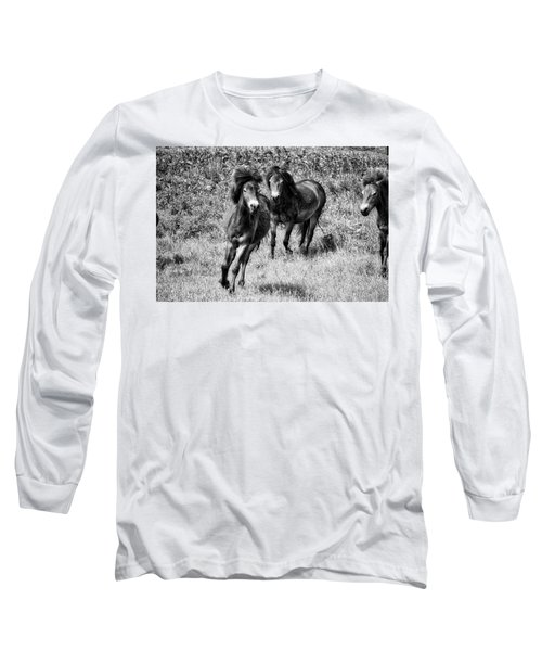 Wild Horses Bw4 Long Sleeve T-Shirt