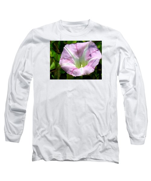 Long Sleeve T-Shirt featuring the photograph Wild Morning Glory by Eric Switzer