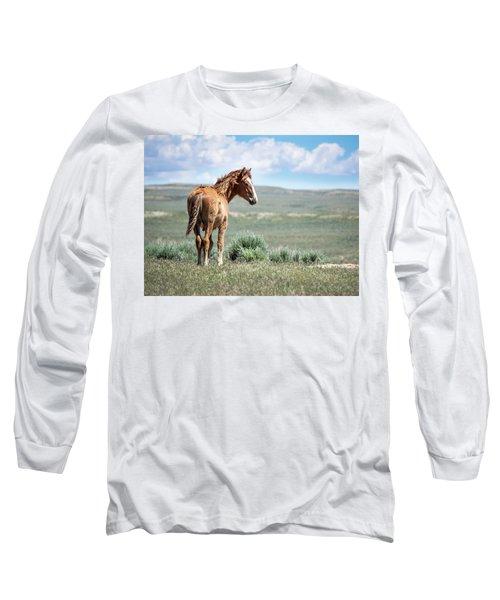 Wild Mustang Colt Of Sand Wash Basin Long Sleeve T-Shirt