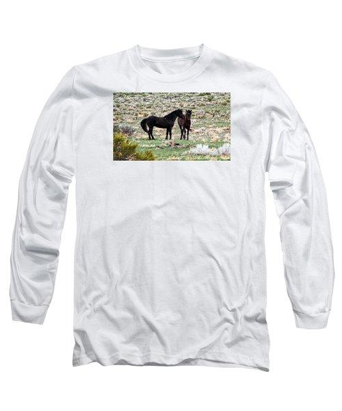 Wild Mustang Stallions Long Sleeve T-Shirt