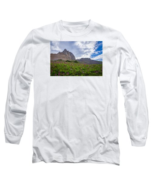 Wildflowers In The Grand Tetons Long Sleeve T-Shirt by Serge Skiba