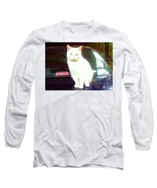 Will Wash Car For Treats Long Sleeve T-Shirt
