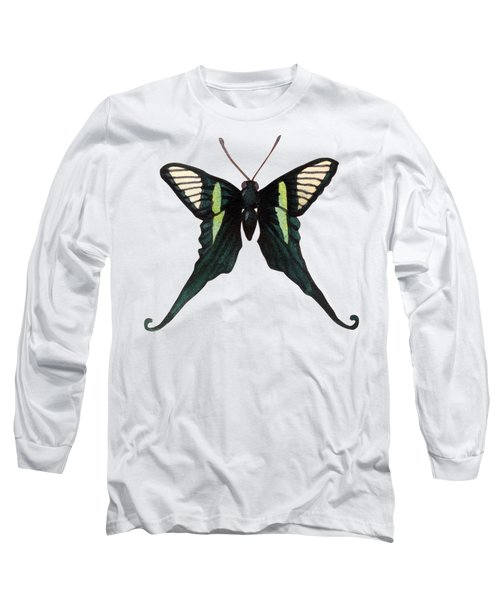 Long Sleeve T-Shirt featuring the painting Winged Jewels 3, Watercolor Tropical Butterfly With Curled Wing Tips by Audrey Jeanne Roberts