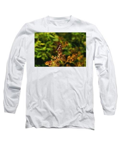 Wingo Butterfly Long Sleeve T-Shirt