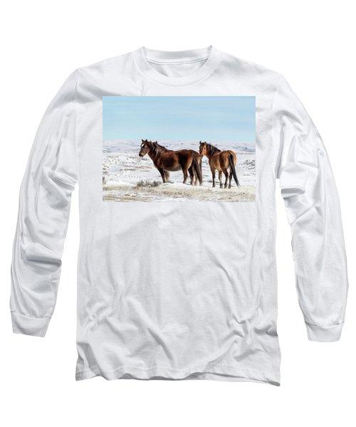 Winter In Sand Wash Basin - Wild Mustangs Long Sleeve T-Shirt