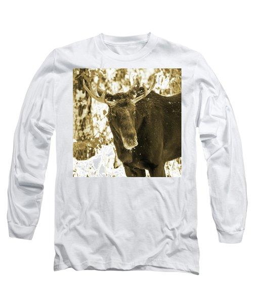 Winter Moose - Sepia Long Sleeve T-Shirt