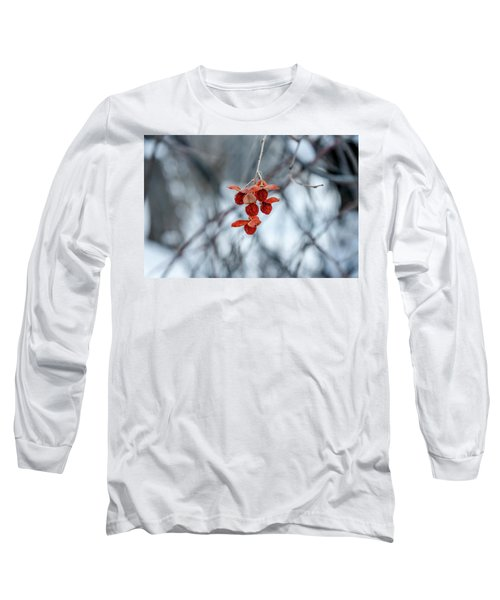 Winter Seeds Long Sleeve T-Shirt