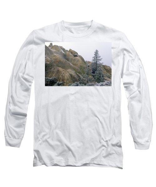 Winter Wind Long Sleeve T-Shirt