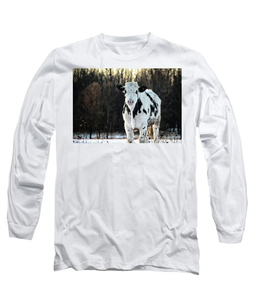 Wisconsin Dairy Cow Long Sleeve T-Shirt