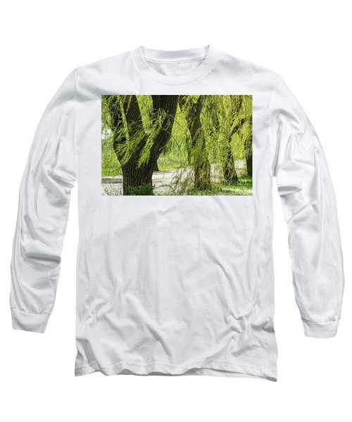 Wispy Willows-2 Long Sleeve T-Shirt