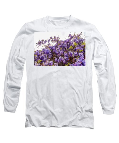 Wisteria Spring Bloom Long Sleeve T-Shirt