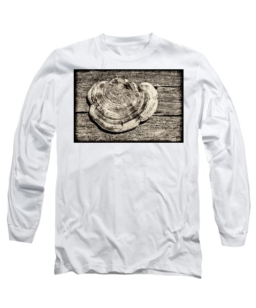 Long Sleeve T-Shirt featuring the photograph Wood Decay Fungi, Nagzira, 2011 by Hitendra SINKAR