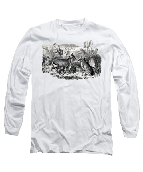 woodcut drawing of South American Maras Long Sleeve T-Shirt by The one eyed Raven