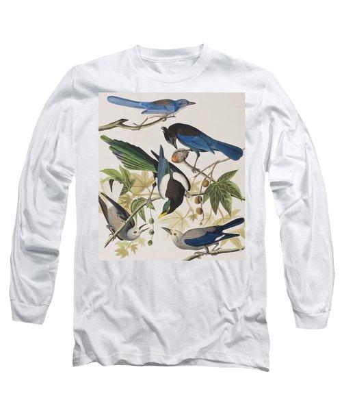 Yellow-billed Magpie Stellers Jay Ultramarine Jay Clark's Crow Long Sleeve T-Shirt