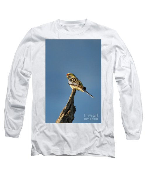 Yellow Crimson Rosella Long Sleeve T-Shirt by Douglas Barnard