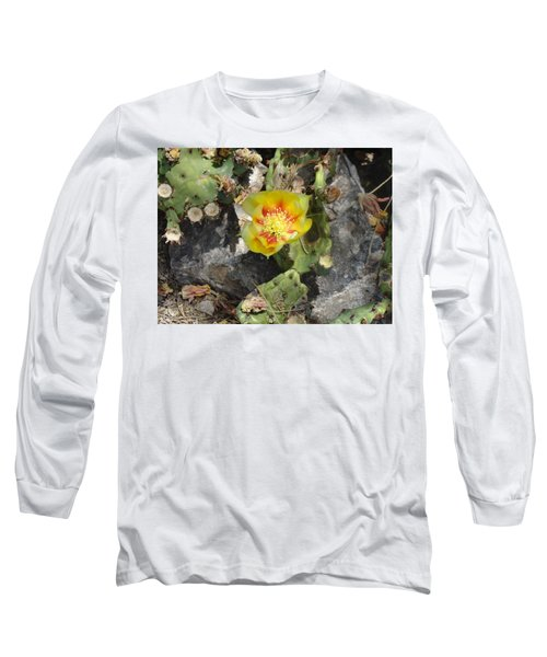 Yellow Cactus Flower Blossom Long Sleeve T-Shirt