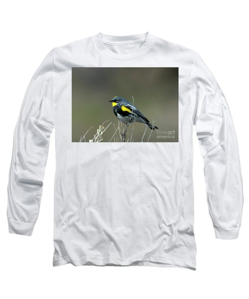 Long Sleeve T-Shirt featuring the photograph Yellow-rumped Warbler by Mike Dawson