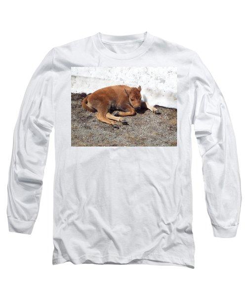 Yellowstone Bison Calf  Long Sleeve T-Shirt