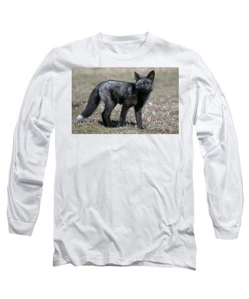 Long Sleeve T-Shirt featuring the photograph Curious by Elvira Butler