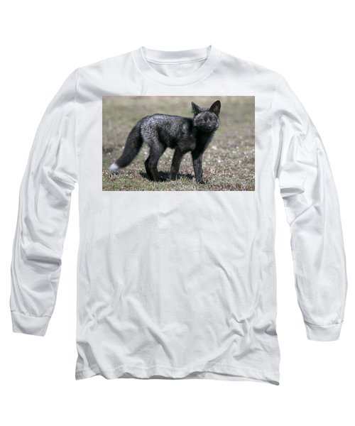 Curious Long Sleeve T-Shirt