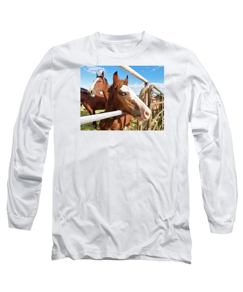 Young Blue Eyed Horse Long Sleeve T-Shirt