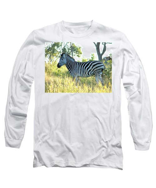 Young Zebra Long Sleeve T-Shirt by Bruce W Krucke