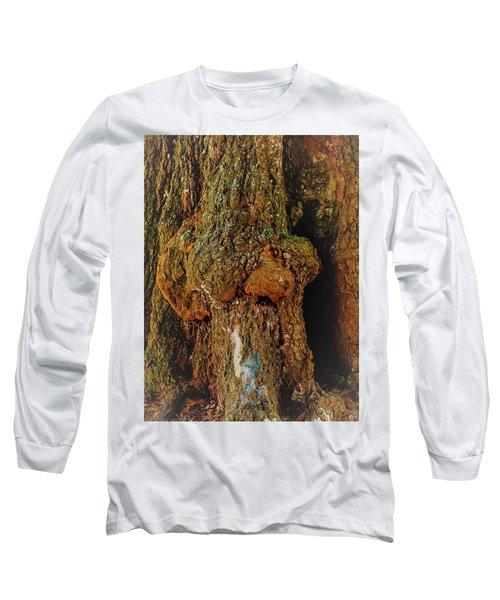 Z Z In A Tree Long Sleeve T-Shirt