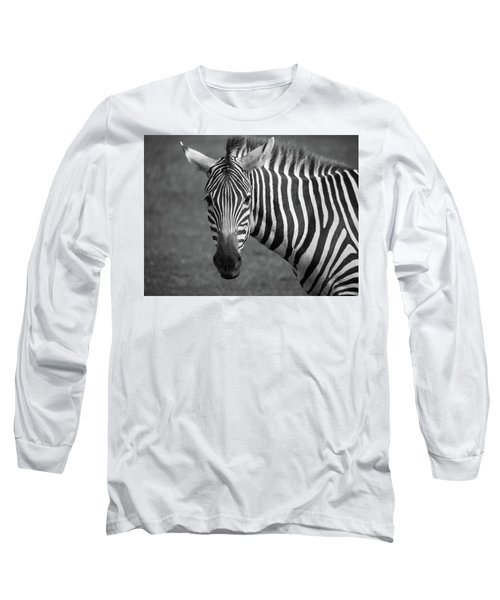 Zebra Long Sleeve T-Shirt by Trace Kittrell