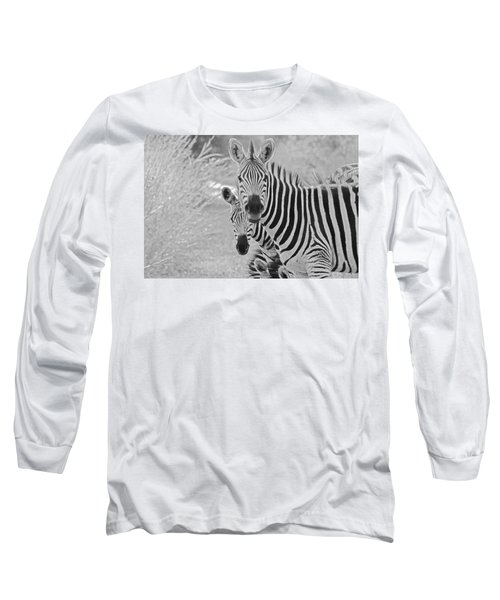 Zebras Long Sleeve T-Shirt by Patrick Kain