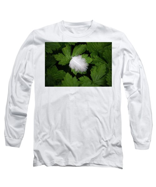 Colours. White Long Sleeve T-Shirt