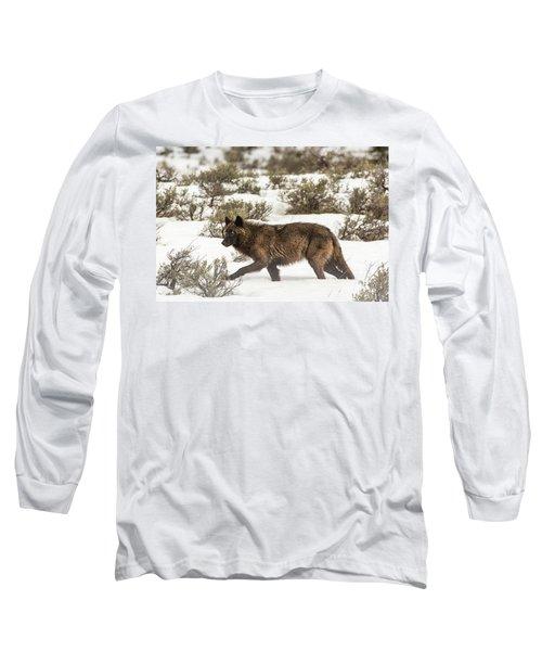 W4 Long Sleeve T-Shirt