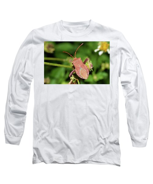 Leaf Footed Bug Long Sleeve T-Shirt