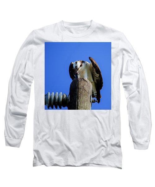 A Tasty Lunch Long Sleeve T-Shirt