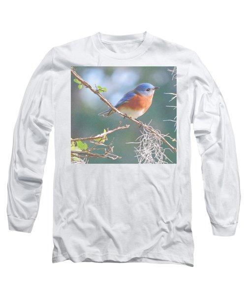 Bluebird In Dixie  Long Sleeve T-Shirt
