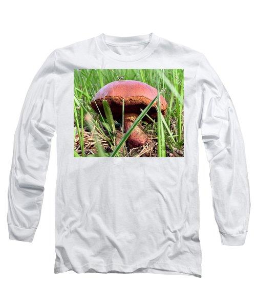 Bug On Boletus Edulis Long Sleeve T-Shirt
