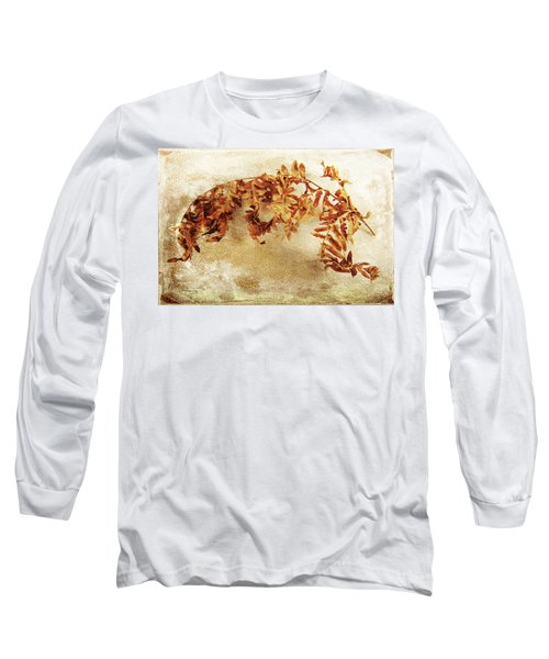Long Sleeve T-Shirt featuring the photograph Disorderly Order by Randi Grace Nilsberg