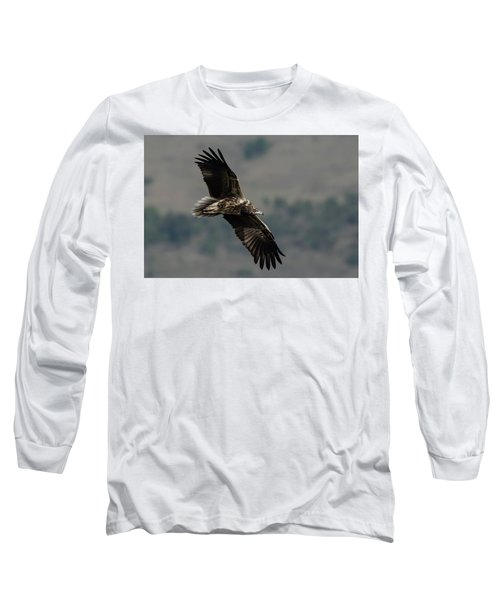 Egyptian Vulture, Sub-adult Long Sleeve T-Shirt
